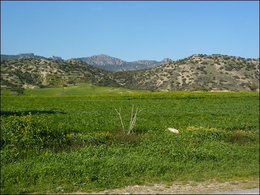 Land for sale in Turnalar, Bogaz, Bogazi, Famagusta, Cyprus