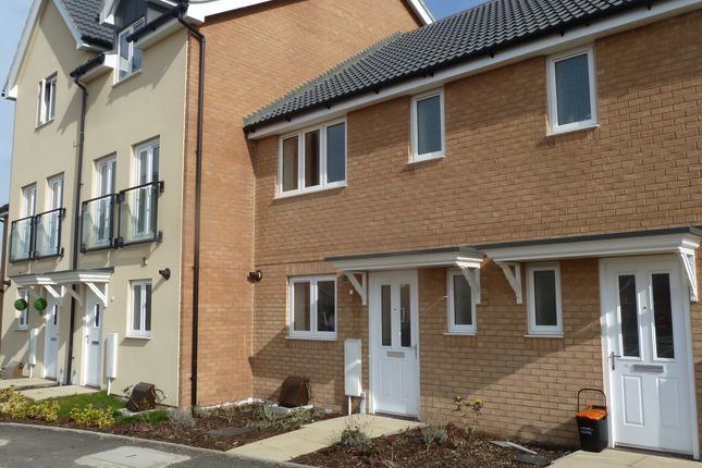 Thumbnail Terraced house to rent in Petunia Avenue, Minster On Sea, Sheerness