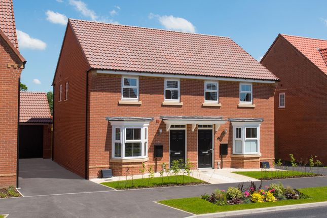 "Thumbnail Semi-detached house for sale in ""Archford"" at Park View, Moulton, Northampton"