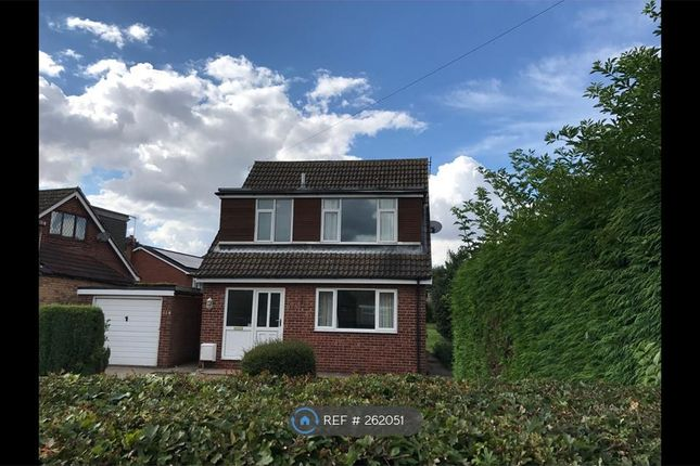 Thumbnail Detached house to rent in Skidby, Skidby