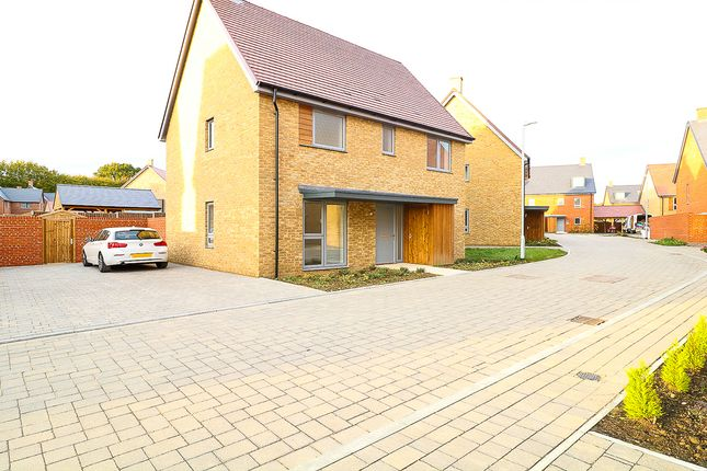 Thumbnail Detached house to rent in John Wells Mews, Ashford