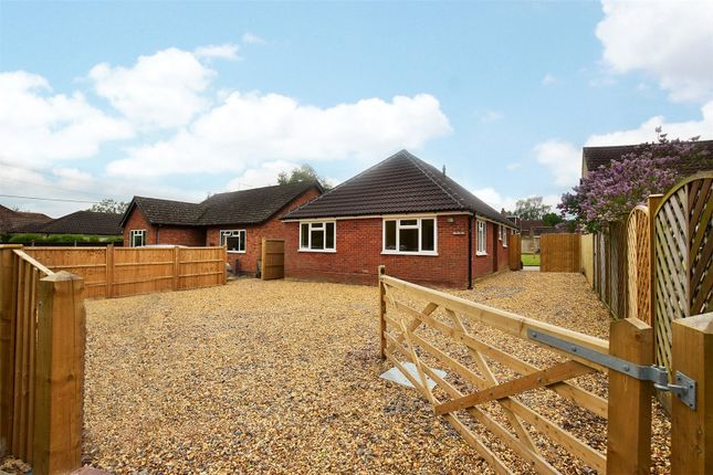 Thumbnail Detached bungalow to rent in Chavey Down Road, Winkfield Row, Winkfield, Berkshire