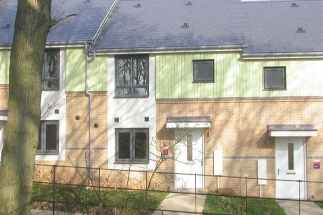 Thumbnail Property to rent in Axial Drive, Colchester