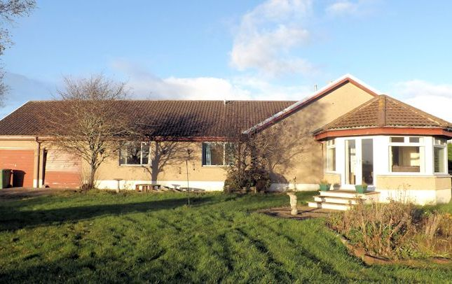 Thumbnail Bungalow for sale in Windyedge, Arboll, By Tain
