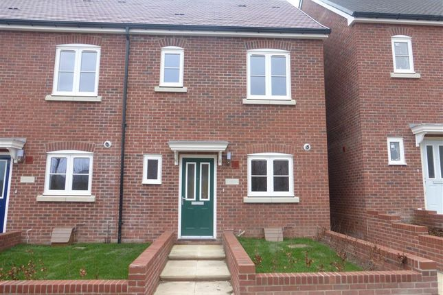 Thumbnail Property to rent in Buttons Avenue, Shaftesbury