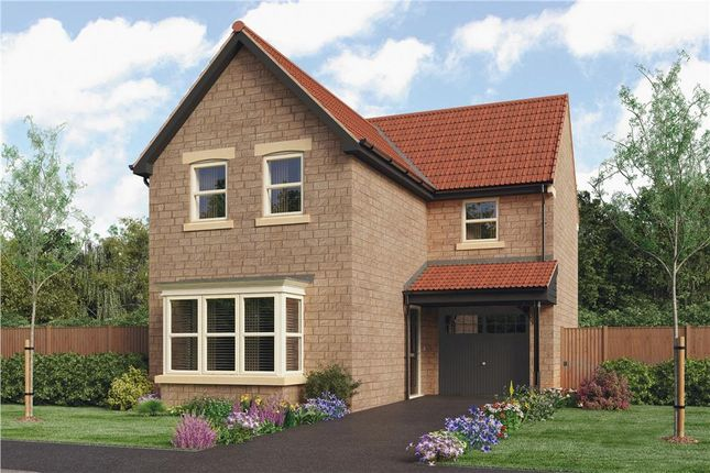 "Thumbnail Detached house for sale in ""Malory"" at Grove Road, Boston Spa, Wetherby"