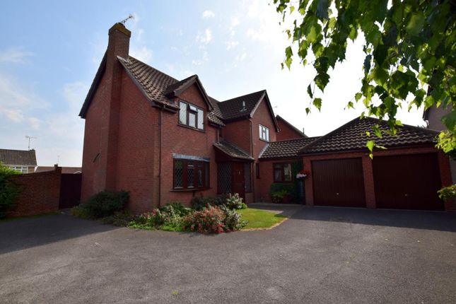 Thumbnail Detached house for sale in Markland Drive, Maldon