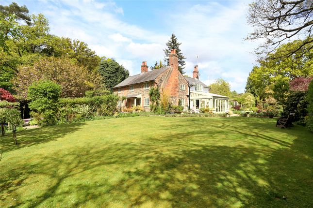 Thumbnail Detached house for sale in Frensham, Farnham, Surrey