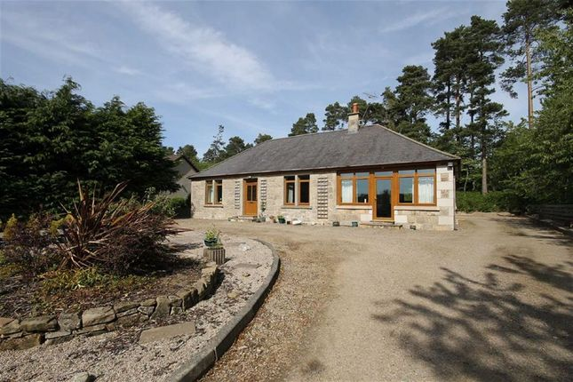 Thumbnail Detached bungalow for sale in Elgin