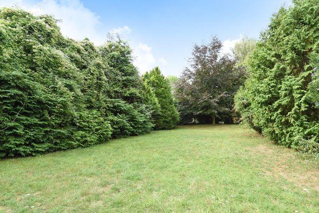 Side Garden of Shrivenham, Swindon SN6