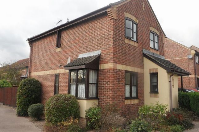 Thumbnail Detached house to rent in Calfe Fen Close, Soham, Ely