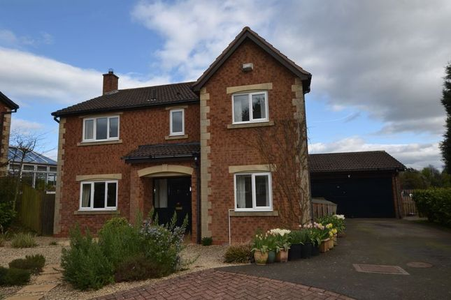 Thumbnail Detached house for sale in Allerburn Lea, Alnwick