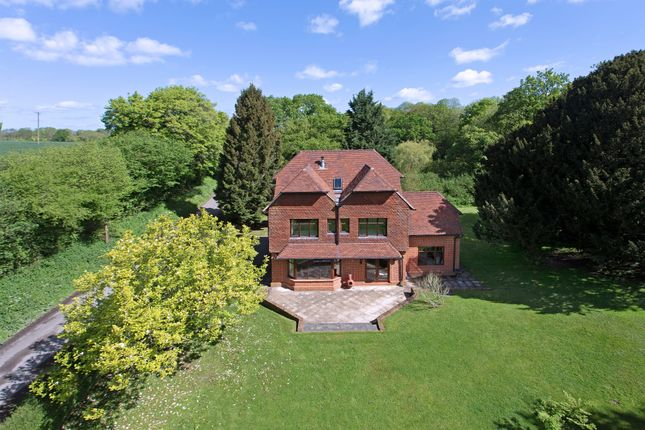 Thumbnail Detached house for sale in South Hay, Kingsley, Kingsley, Hampshire