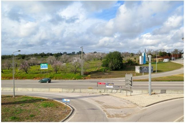 Thumbnail Land for sale in 8200 Guia, Portugal
