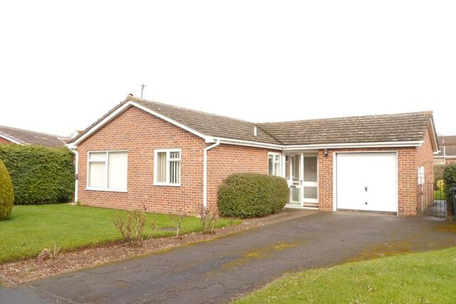 Thumbnail Detached bungalow for sale in Juniper Place, Ross-On-Wye