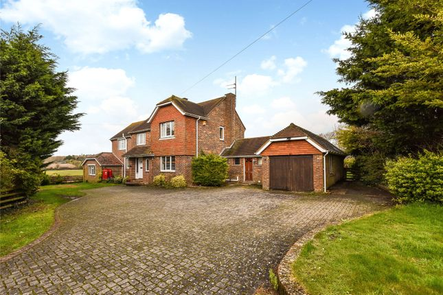 Thumbnail Detached house for sale in The Street, Clapham, Worthing, West Sussex