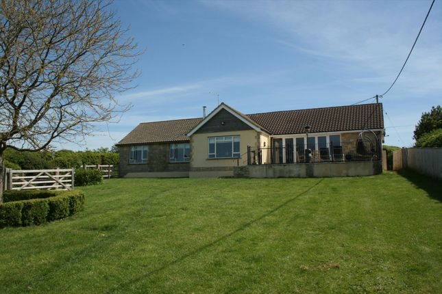 Thumbnail Bungalow for sale in Maybella, Caundle Marsh, Sherborne