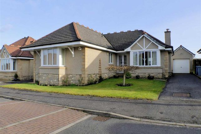Thumbnail Bungalow for sale in Burns Wynd, Stonehouse, Larkhall