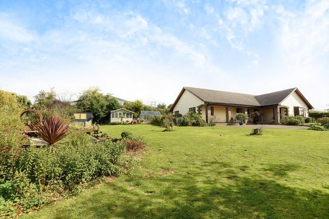 Thumbnail Detached bungalow for sale in Garway Hill, Herefordshire
