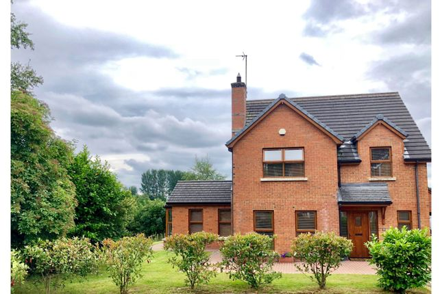 Thumbnail Detached house for sale in Knowehead Dale, Broughshane, Ballymena