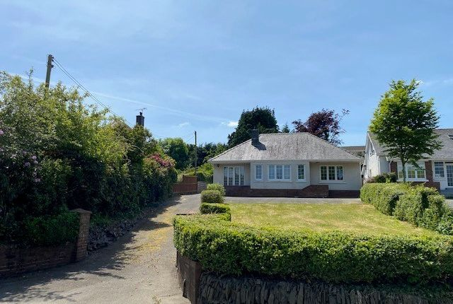 Thumbnail Detached bungalow for sale in North Road, Lampeter
