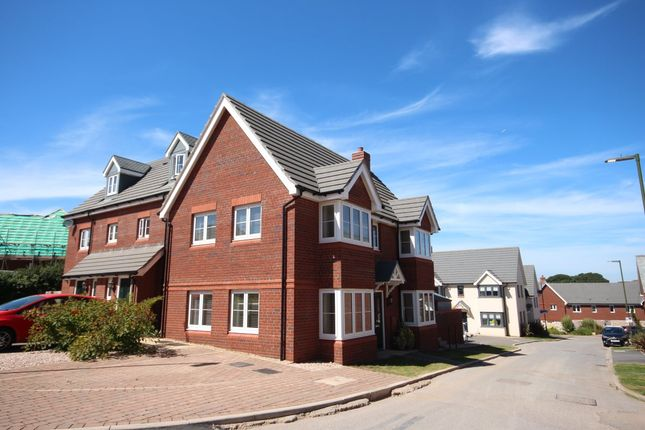 Thumbnail Semi-detached house to rent in Mimosa Way, Paignton