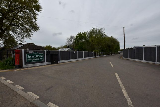 Thumbnail Mobile/park home to rent in Gutteridge Hall Lane, Weeley, Clacton-On-Sea