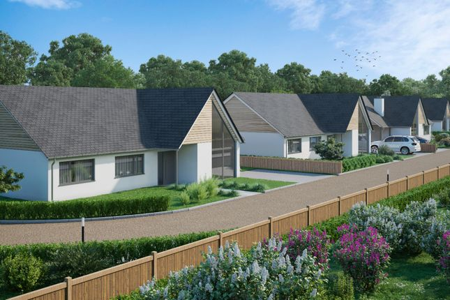 Thumbnail Bungalow for sale in Fieldside, Stretham, Ely