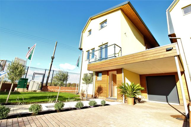 Thumbnail Detached house to rent in Grover Gardens, Romford