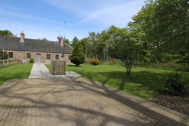 Thumbnail Bungalow to rent in Old Mains Fasque, Fettercairn, Laurencekirk