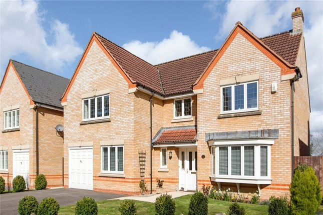 Thumbnail Detached house for sale in Ormonde Gardens, Newbury, Berkshire