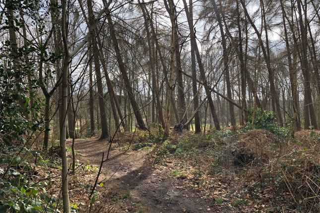 Thumbnail Land for sale in Coombes Lane, Wokingham