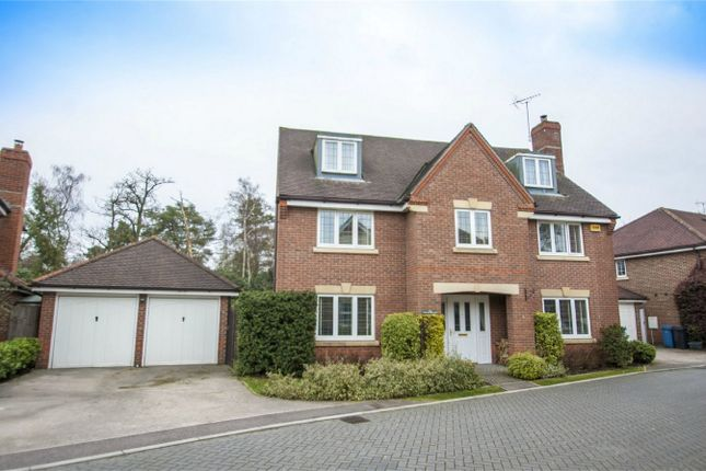 Thumbnail Detached house for sale in Hugh De Port Lane, Fleet