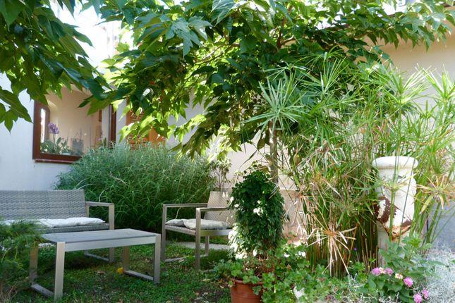 Garden of Località S. Giacomo Ca 60, Camporosso, Imperia, Liguria, Italy