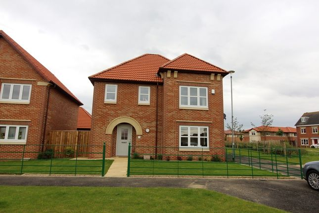 Thumbnail Detached house to rent in Collingsway, Darlington, County Durham