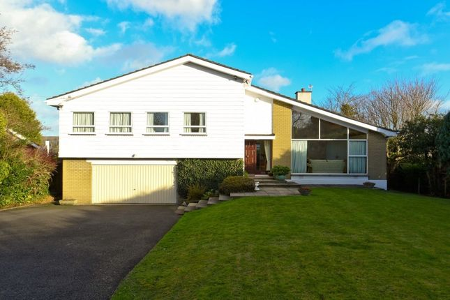 4 bed detached house to rent in Crawfordsburn Road, Newtownards