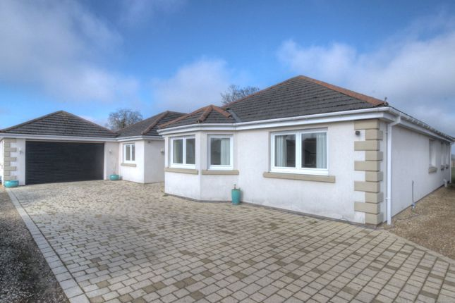 Thumbnail Bungalow for sale in Cargo, Carlisle