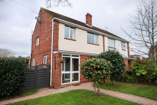 Thumbnail Semi-detached house to rent in Newton St. Cyres, Exeter