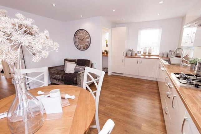 "Thumbnail Detached house for sale in ""Alnwick"" at Livingstone Road, Corby"