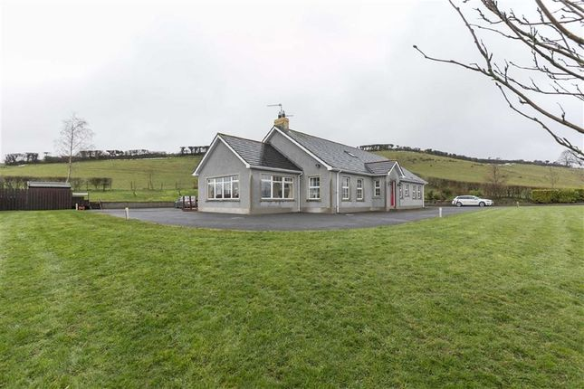 Thumbnail Detached bungalow for sale in Drumgooland Road, Seaforde, Down