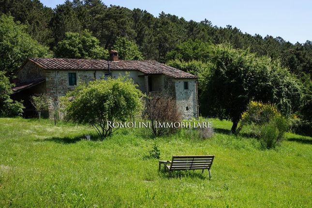 Old Farmhouse With Annex And Land For Sale Anghiar