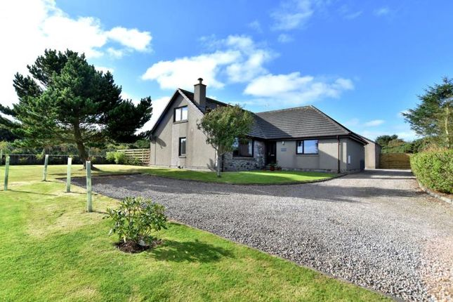 Thumbnail Detached house to rent in The Sidings, Hatton, Peterhead