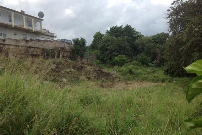 Land for sale in Tower Isle, Saint Mary, Jamaica