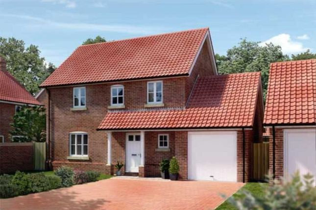Thumbnail Detached house for sale in Oaks Lea, Acle, Norwich