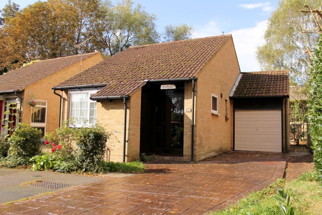 Thumbnail Bungalow to rent in Alterton Close, Horsell, Woking