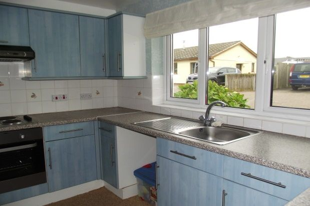 Thumbnail Bungalow to rent in Daisymount Drive, St. Merryn, Padstow