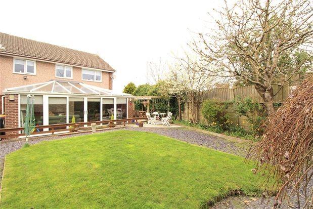 Garden of Greaves Town Lane, Preston PR2