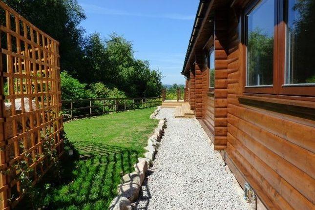 Garden of Lodge 6, Alpine Meadow, Kippford Dalbeattie DG5