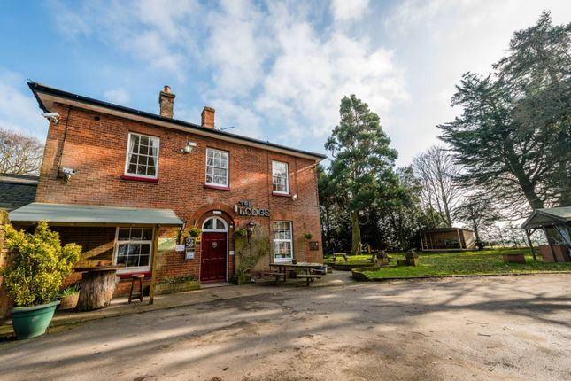 Thumbnail Hotel/guest house for sale in Vicarage Road, Salhouse, Norwich