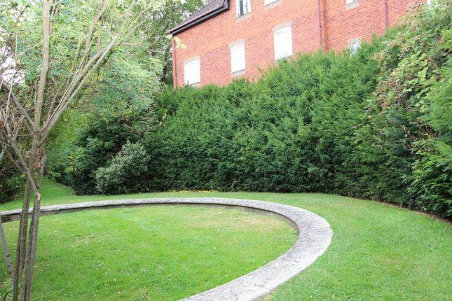 Garden (Communal)